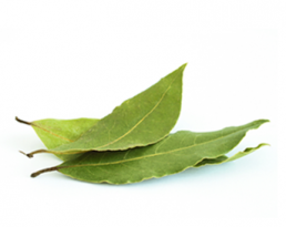 Bay Leaf-Tejpat